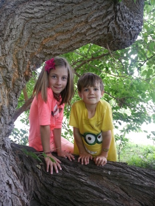 the kids found a climbing tree