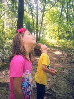 listening to cicadas on our hike